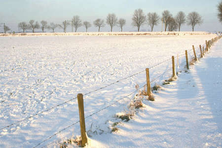 polder: Polder landscape in Holland in the winter Stock Photo