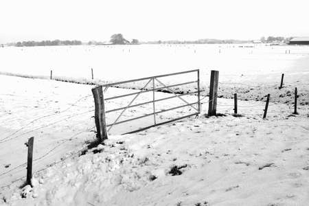View at a Dutch polder in winter in black and white photo