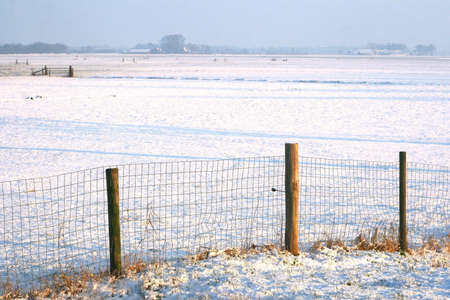 View at a Dutch polder in winter