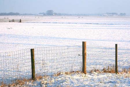 polder: View at a Dutch polder in winter