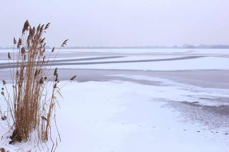 plassen: Landscape of a frozen lake in the polder in Holland