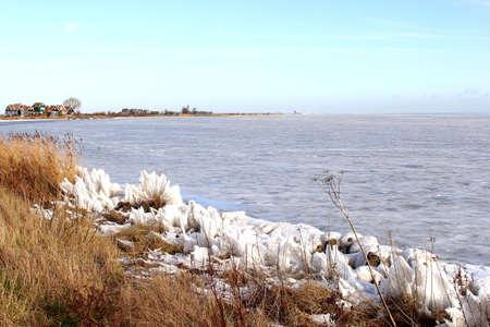 cane plumes: Landscape of a frozen IJsselmeer in Holland near Amsterdam