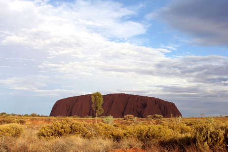 ayers: Ayers rock in purple colors during sunset