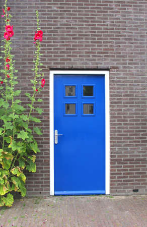 contempory: Part of a modern house with a blue door and blooming hollyhocks