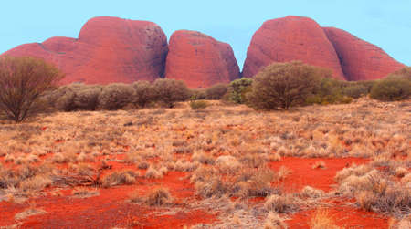 The Olgas in the red centre of the Australian Outback  photo