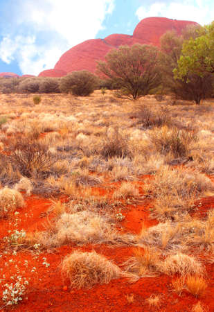 permanence: Landscape with a view at Kata Tjuta Olgas in the red desert of Northern Territory Australia
