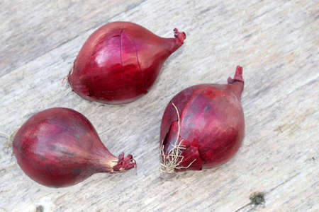Red onions, isolated on a weathered wooden background photo