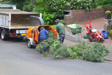 soest: Soest, Netherlands, may 2014 Gardeners put the branches of a tree in a wood chipper Editorial