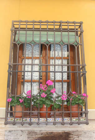 balcony window: Window, balcony, flowerpots and blooming flowers, Spain