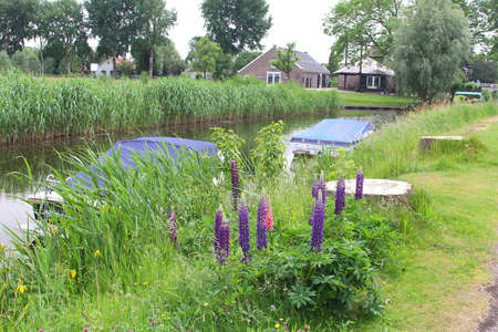 plassen: Landscape with a farm, boats and a canal in Loosdrecht, Netherlands