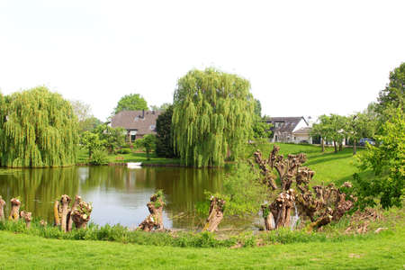 Landscape with a lake, pollarded willows, boat and houses in the Betuwe,Holland