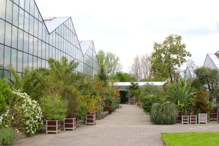 botanical gardens: Utrecht Netherlands May 2015 Greenhouses and tropical plants in the Botanical Gardens in Utrecht
