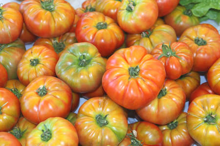 greengrocery: Fresh tomatoes at the greengrocery in Spain