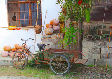 china people: Rustic bike and carrier cycle and pumpkins in Hongcun, China