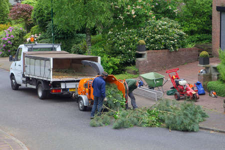 shredder: Soest, Netherlands, May 2014, Gardeners are using the wood shredder after cutting down a tree