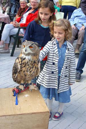 soest: Soest, Netherlands, September 2015, Children are stroking a wild eagle owl