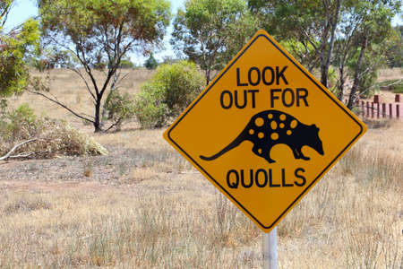 ranges: Quolls warning sign along a road in Australia