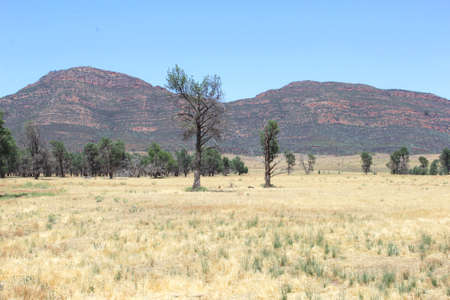 flinders: Colorful Flinders Ranges National Park in South Australia