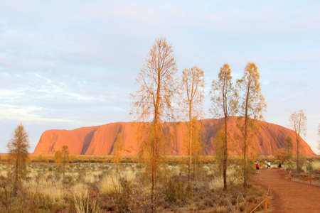 kata: Sunrise colors of Uluru Ayers Rock Uluru Kata Tjuta National Park, Australia