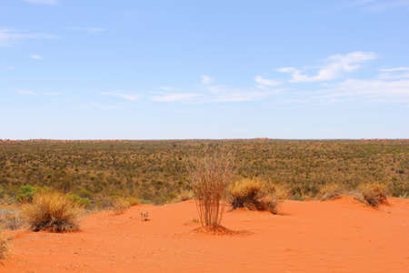 red centre: Panorama of the Red Centre, Northern Territory, Australia
