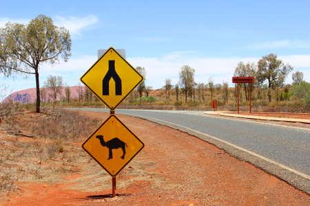 ayers: Wild camel warning sign in Yulara near Uluru Ayers Rock, Australia