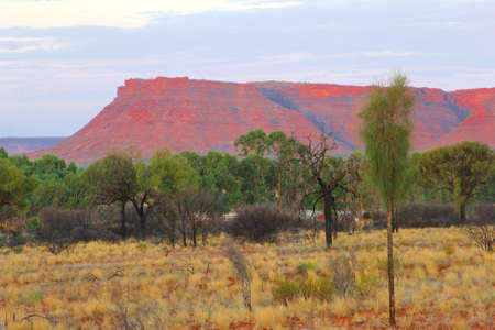 kings canyon national park: Sunsetcolors of Kings Canyon, Watarrka National Park, Australia