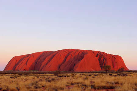 Red colors of Uluru at sunset, Australia. Uluru is a sacred place of the Aborigines