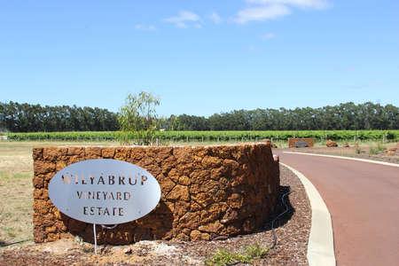 western australia: Margaret River, Western Australia, in December 2015 Wilyabrup Vineyard Estate in Margaret River Editorial