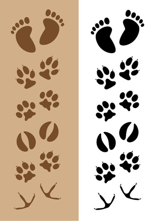Footprints  Tracks Ilustrace