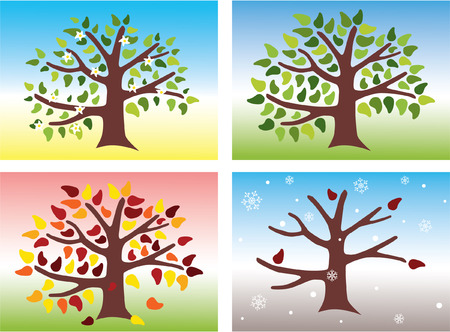 Tree During the Four Seasons of the Year Illustration