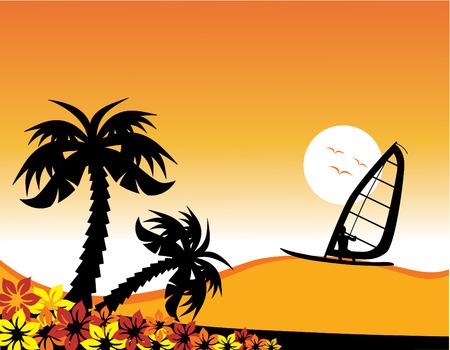 windsurfing: Vector illustration of a surfer