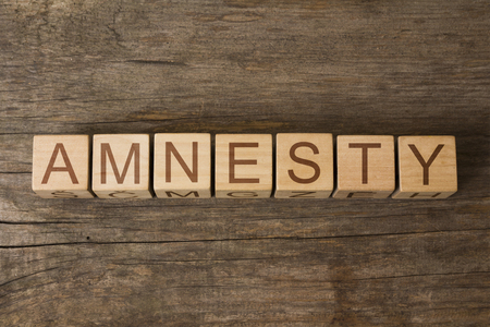 the word of AMNESTY on a wooden cubes 版權商用圖片