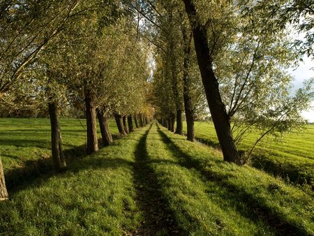 unpaved road: the empty unpaved road ahead Stock Photo