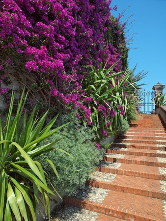 paisajismo: escaleras jard�n mediterr�neos  Foto de archivo