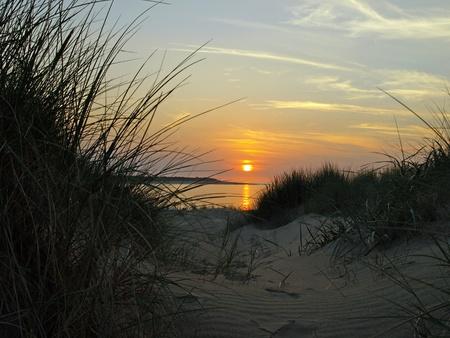 Beach dunes overlooking the sun set into the ocean photo