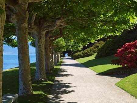 lake como: Tranquil path in garden along the shore of lake como, Bellagio Italy