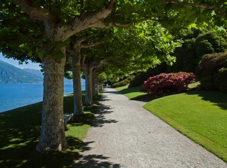 lake como: Beautiful path in park along the shore of lake Como, Italy