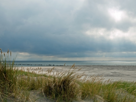desolate: Desolate beach