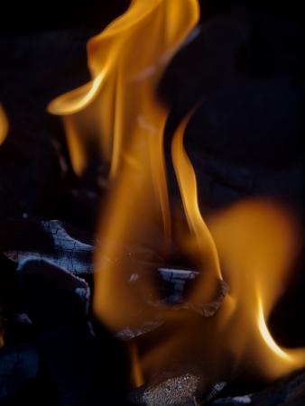Charcoal fire photo