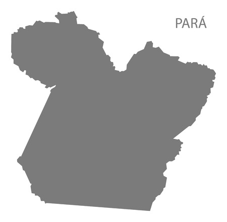 gray: Para Brazil map gray