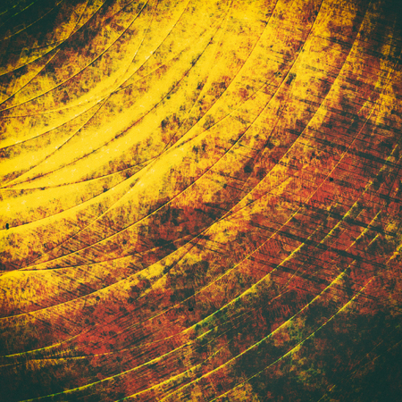 Golden scratched and grooved metal texture background