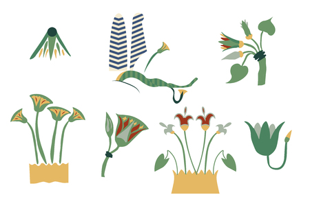 Egypt cane branches set. Illustration