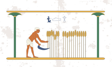 Ancient egypt background. A man reaps a wheat crop on the field. Historical background. Ancient people
