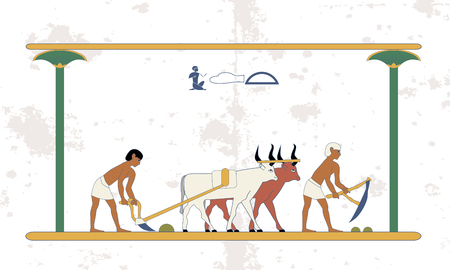 Ancient egypt background. Peasants with a team of bulls plow the field. Historical background. Ancient people