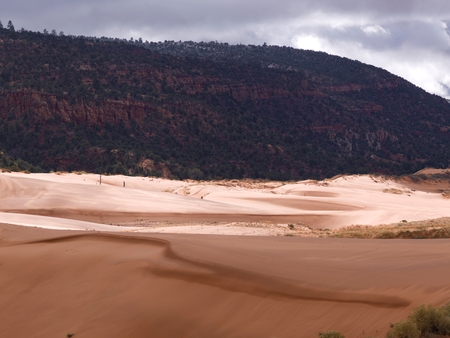 Sand dunes in a desert, Coral Pink Sand Dunes State Park, Utah, USA