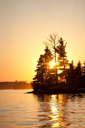 Silhouette of trees at sunrise, Lake of the Woods, Ontario, Canada