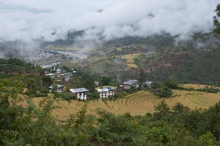 Aerial view of terraced field, Punakha Valley, Punakha District, Bhutan Banco de Imagens - 97719772