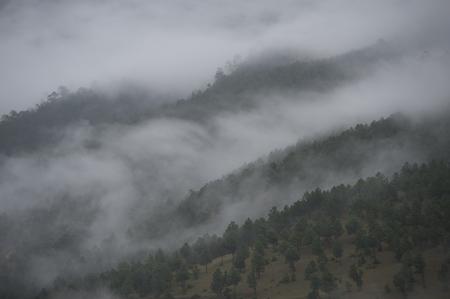 Fog over mountains, Punakha Valley, Punakha District, Bhutan