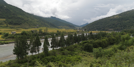 Trees along the river, Punakha District, Bhutan