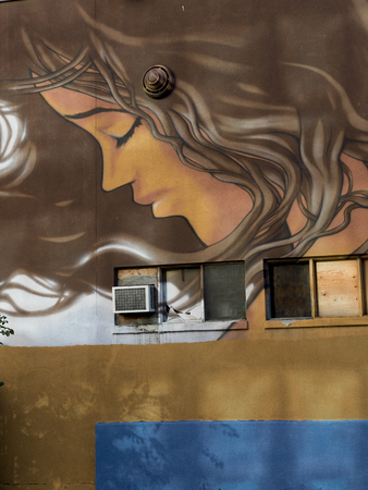 Low angle view of a mural on the wall of a building at Golden Square Mile, Montreal, Quebec, Canada Reklamní fotografie